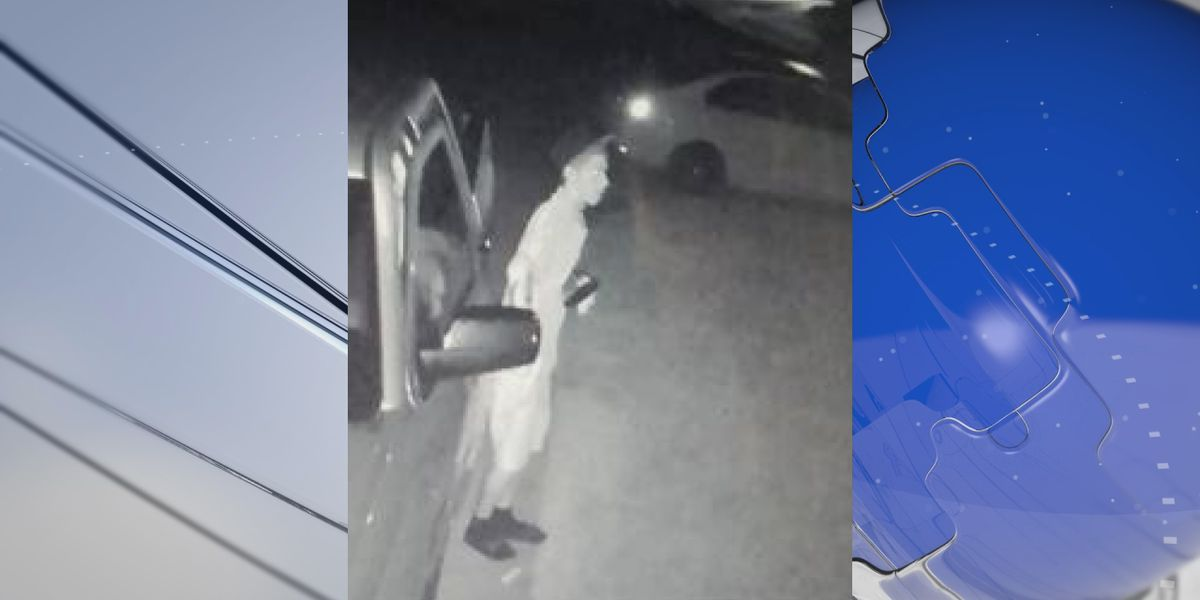 Search continues for suspects involved in attempted car burglaries in Manatee County