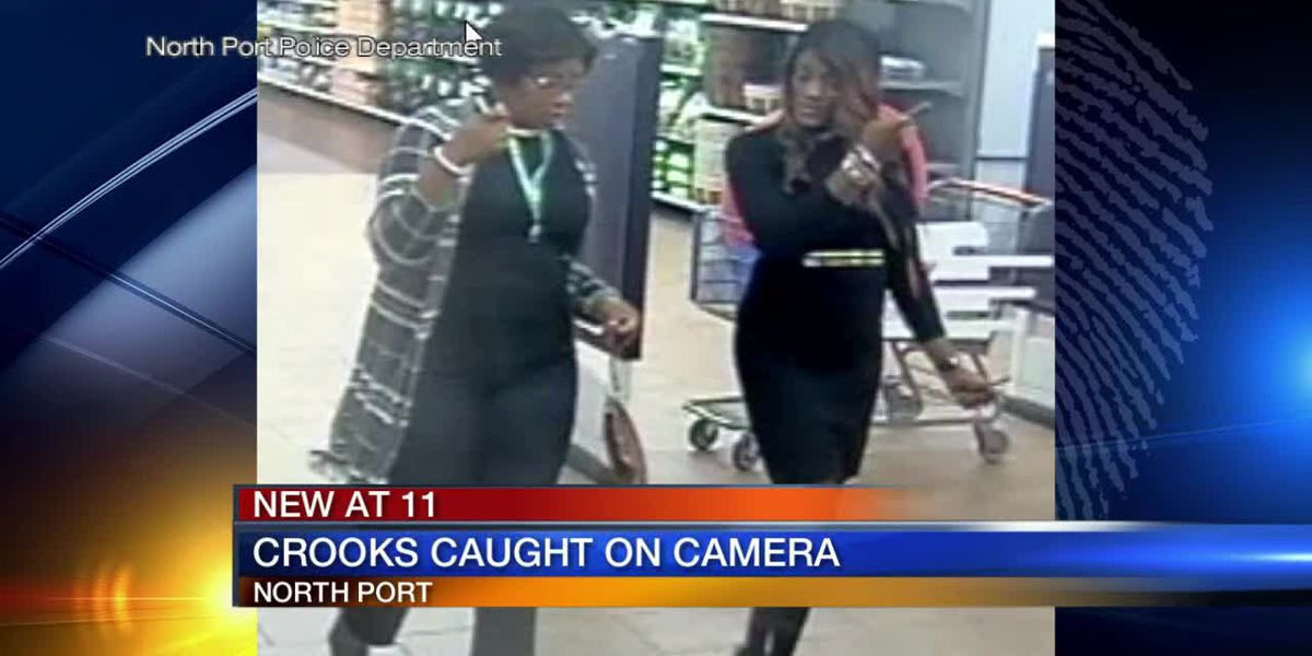 Crooks caught on camera in North Port