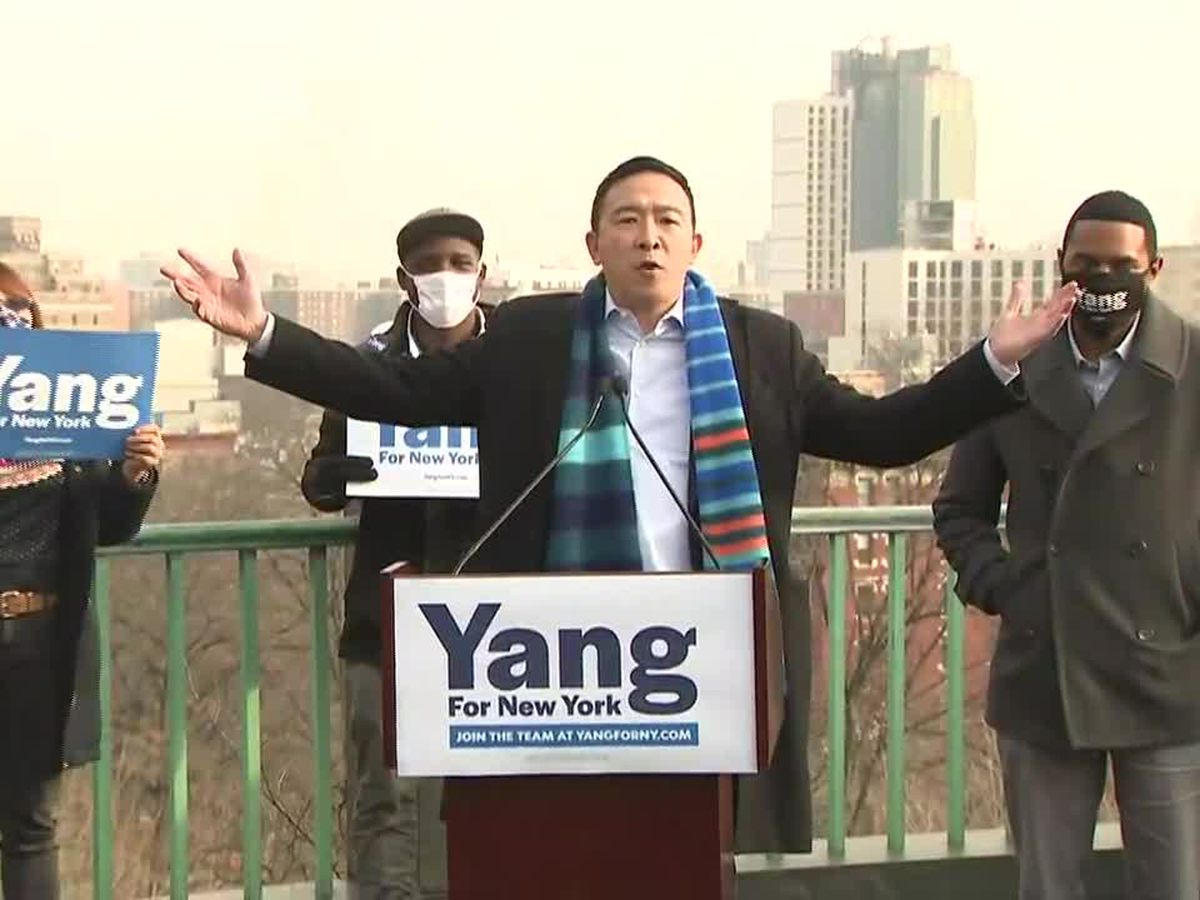 Ex-presidential candidate Andrew Yang joins NYC mayoral race