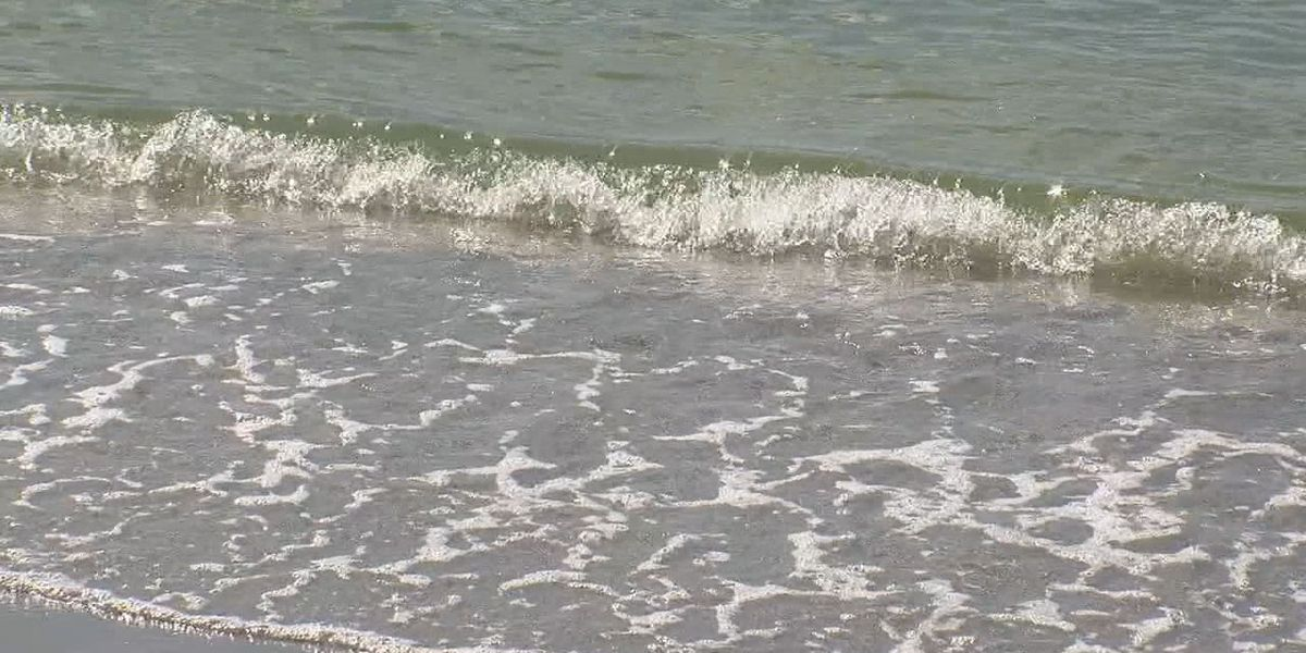 Update on red tide in Sarasota County