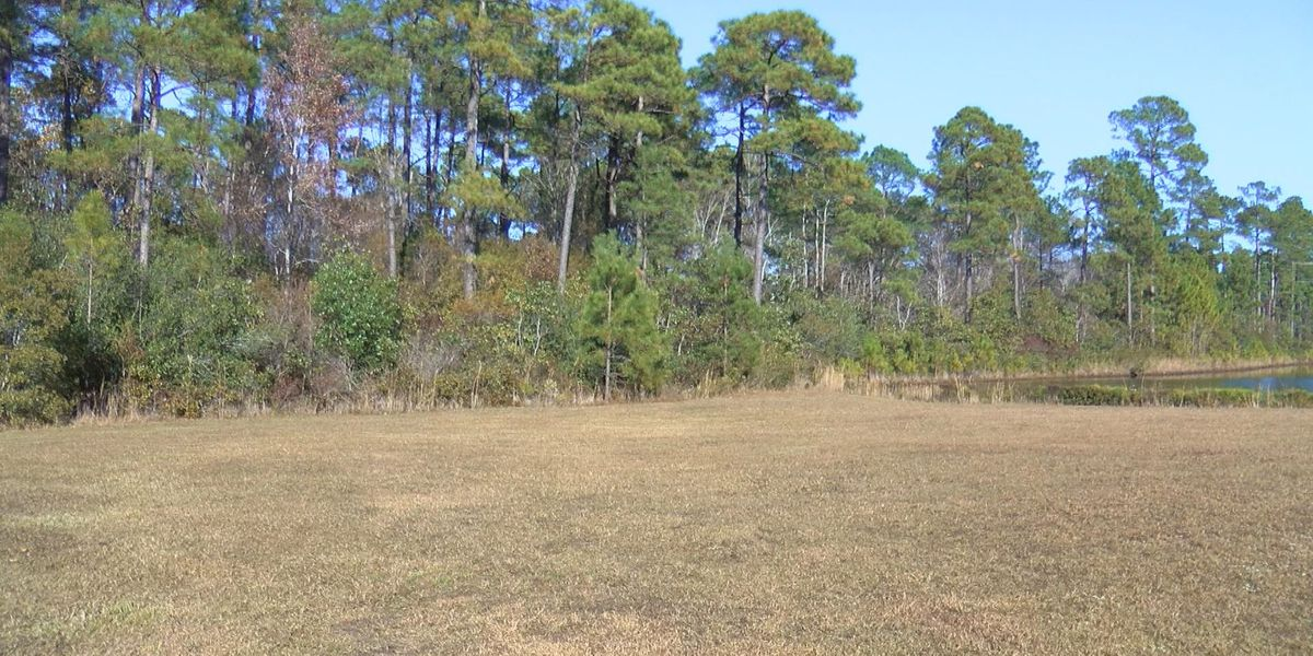 The 'wildlife hazard' at Pinebrook Park is getting a fix, residents asked to avoid the area