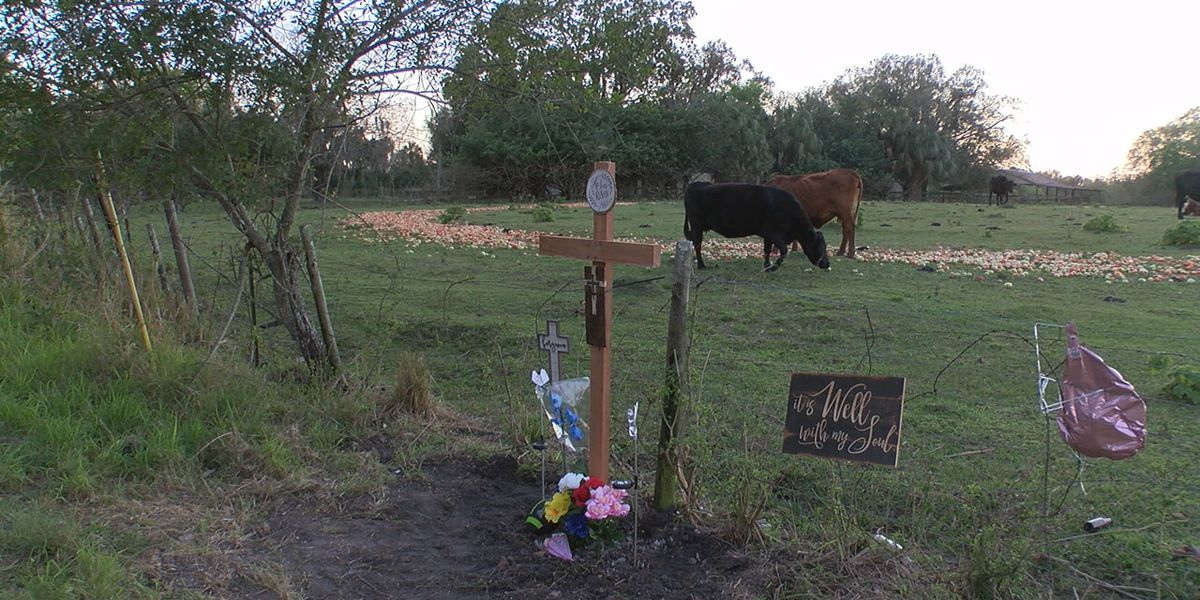 Memorial set up at the spot where skeletal remains of Jabez Spann were found in Palmetto