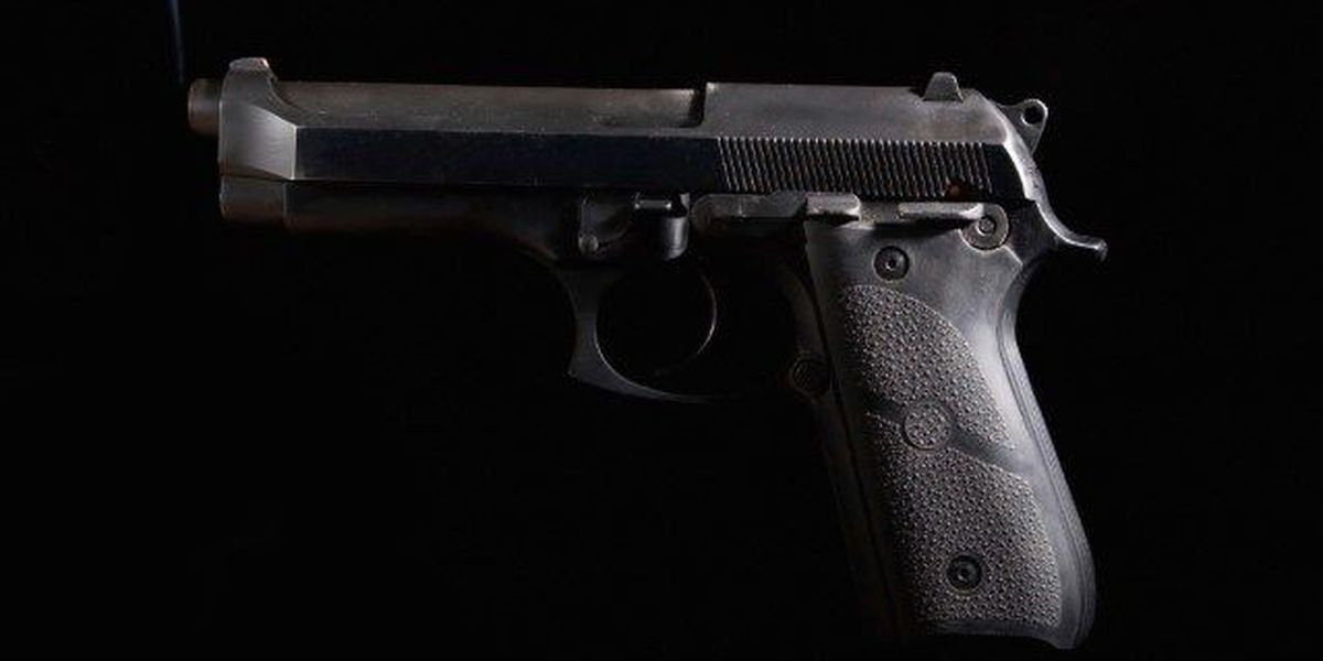 Off-duty Charlotte County officer accidentally discharges fire arm