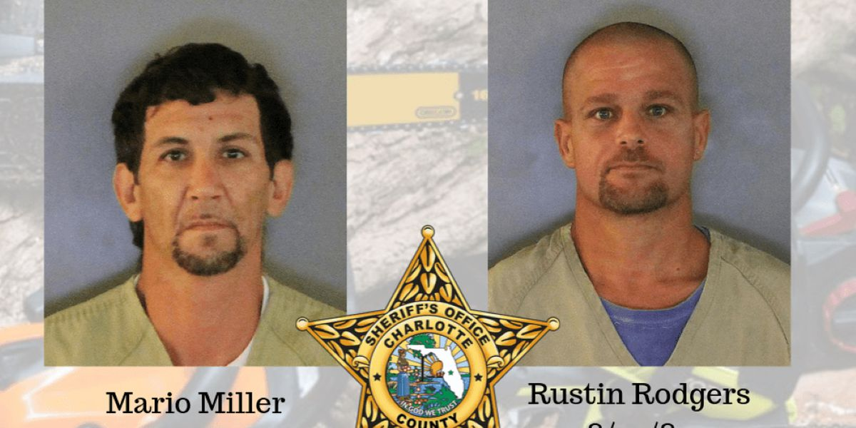 Two Florida men accused of stealing chainsaws, trying to sell them back to victim
