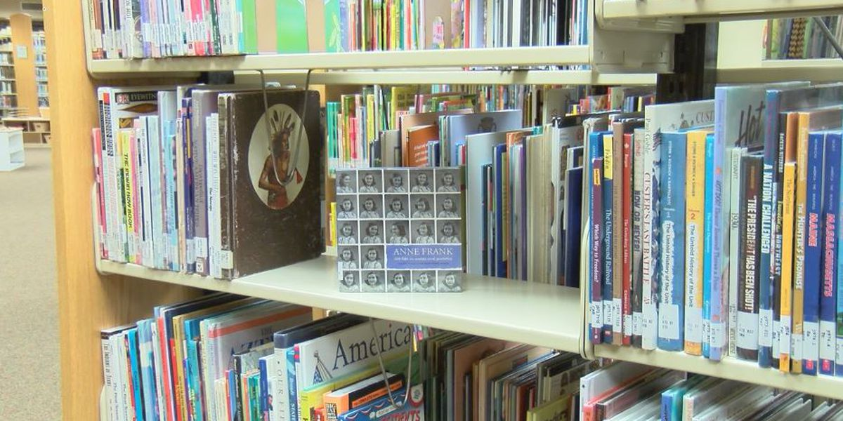 Popular libraries in North Port, downtown Sarasota to temporarily close for upgrades