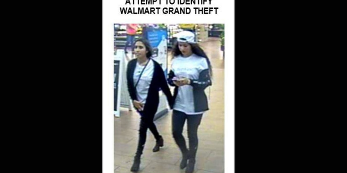 Police: Two females caught on camera stealing iPhone XR from Walmart in North Port