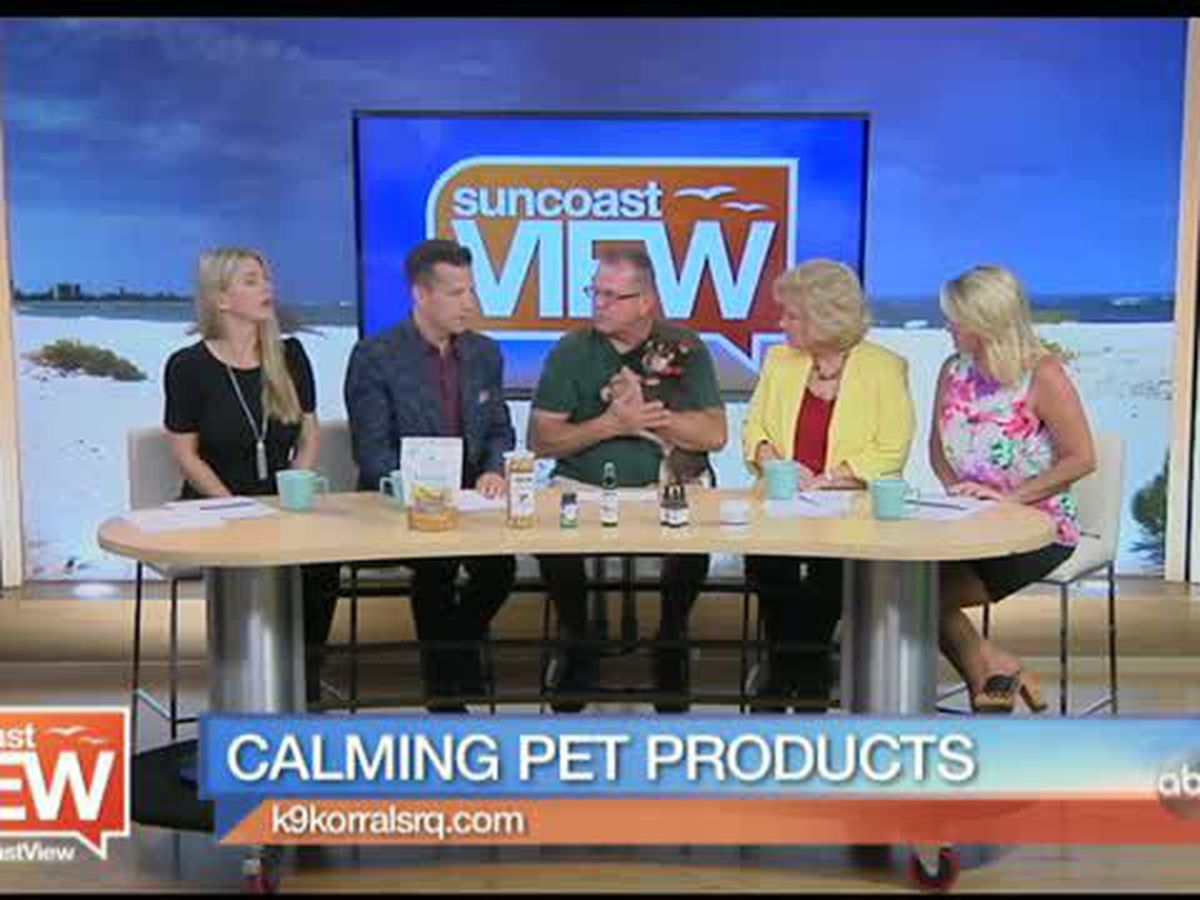 Keep Dogs Calm through Storm Season with Products from K9 Korral | Suncoast View