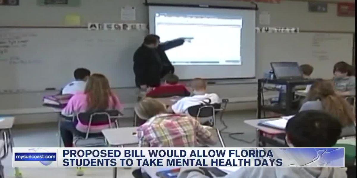 FL Schools Mental Health