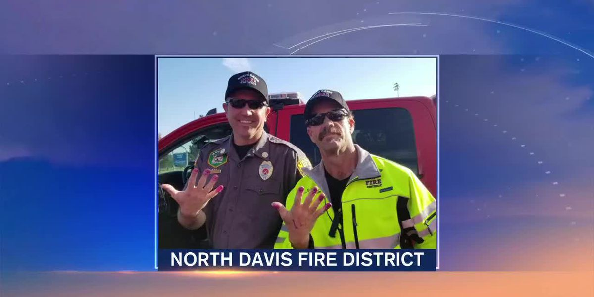 Two Firefighters' Stories Go Viral After a Sweet Rescue | Suncoast View