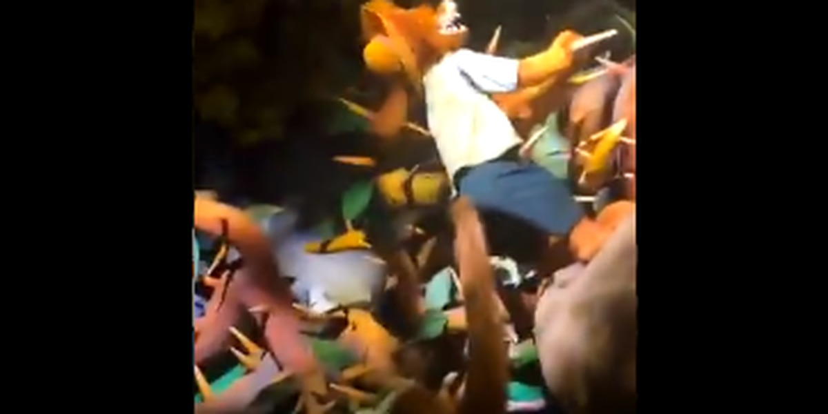 WATCH: Splash Mountain tourists have to jump ship as boat sinks