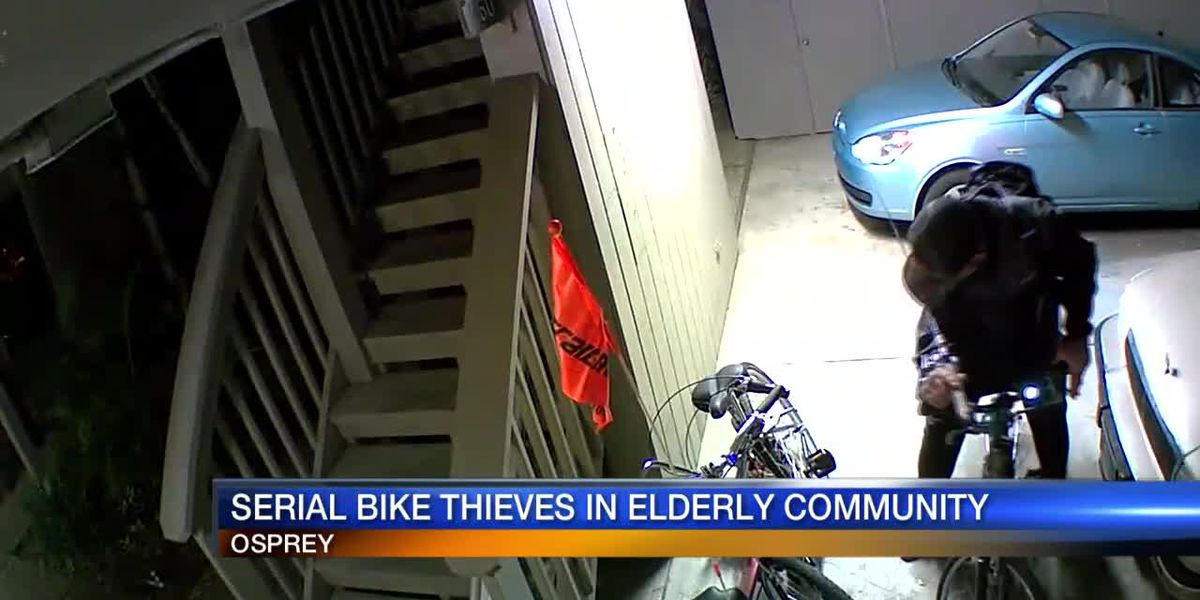 Community in Osprey dealing with multiple bike thefts