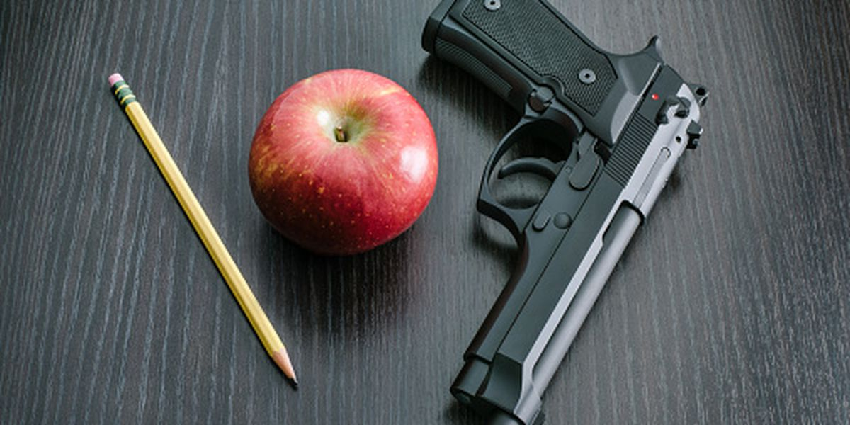 Arming teachers brings contentious debate in Florida Senate