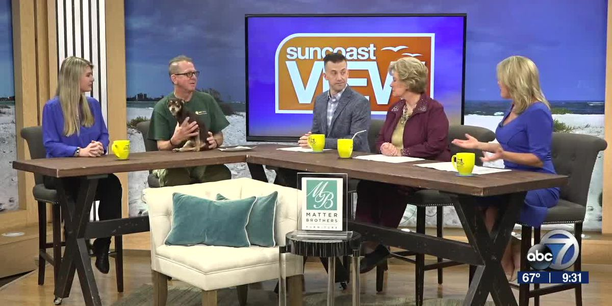 Tips for Keeping Pets Healthy with K9 Korral | Suncoast View