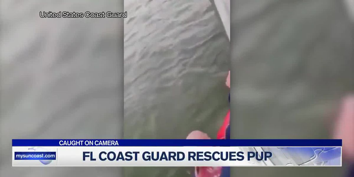 Coast Guard Rescues Pup