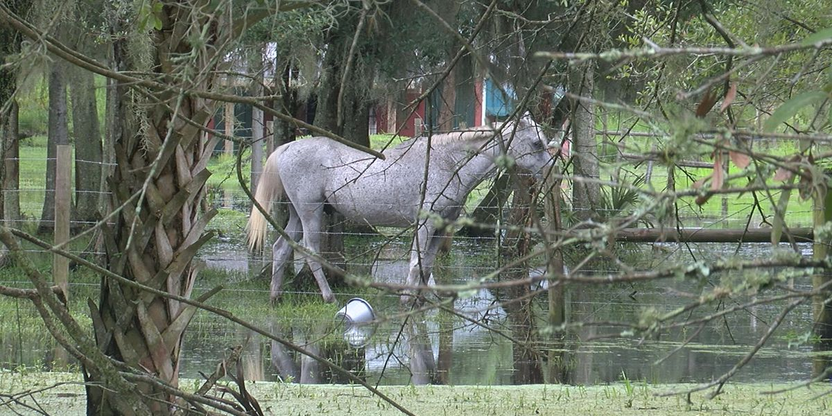 Flooding concerns continue for some residents of Hidden River in eastern Sarasota County