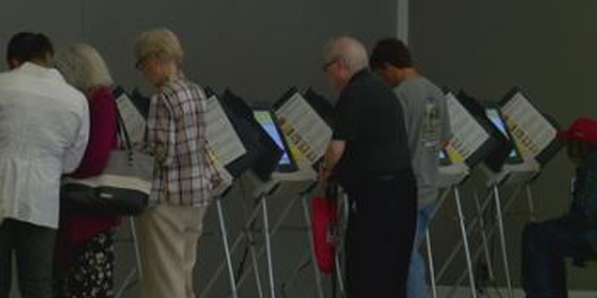 Women, seniors had biggest impact on midterms in Florida