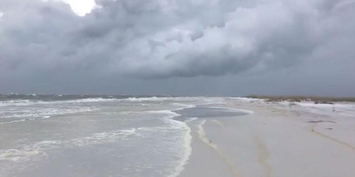 VIDEOS: Beach conditions along the Suncoast
