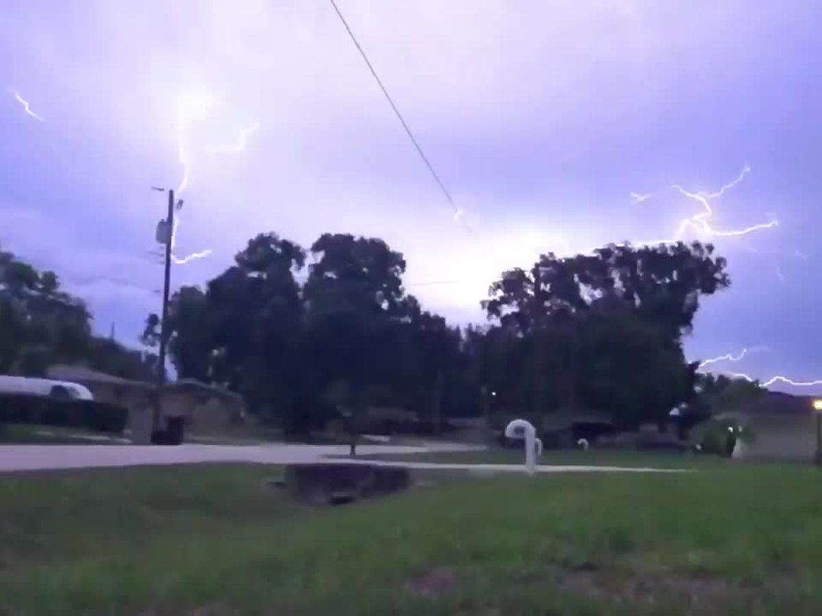 VIDEO: Lightning spreads through the night sky