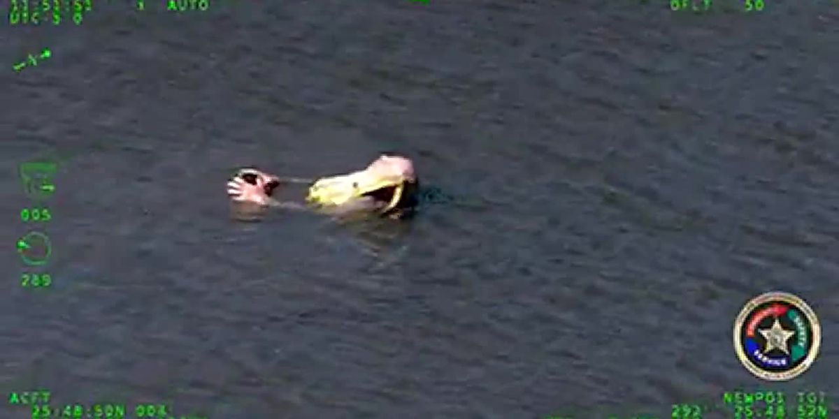 VIDEO: Sheriff's office helicopter helps rescues kayaker left stranded in Everglades