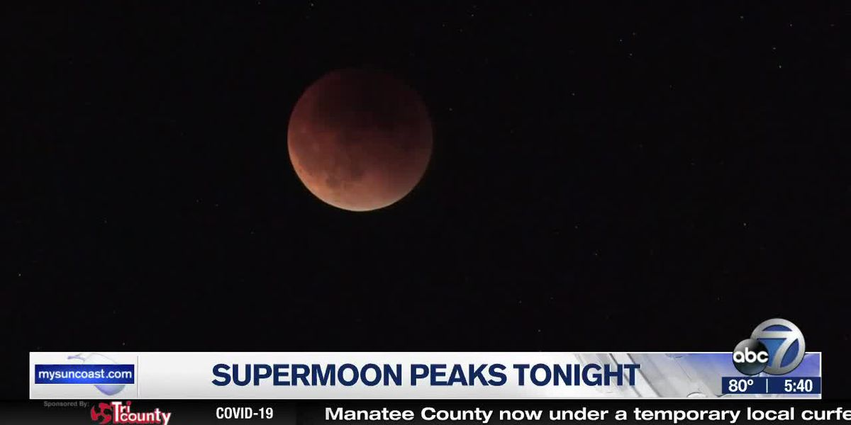 Look up, Suncoast: The biggest and brightest Moon of the year peaks tonight