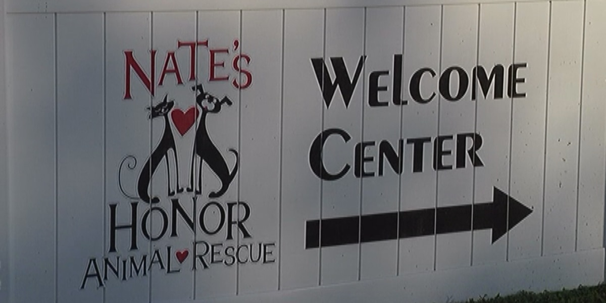 Nate's Honor Animal Rescue in Bradenton in desperate need of pet supplies