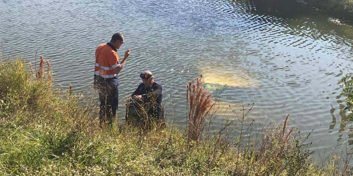 Driver ends up in pond at North Port elementary school