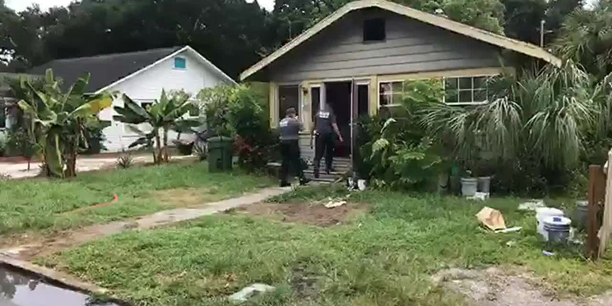 Cat rescued at Bradenton house fire that displaced family of four