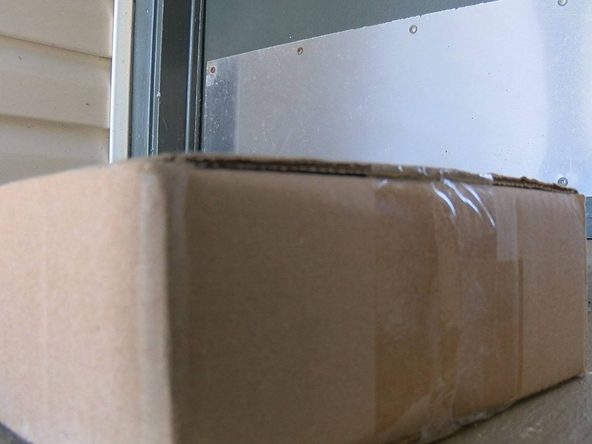 Sarasota Police remind residents to protect homes against porch pirates
