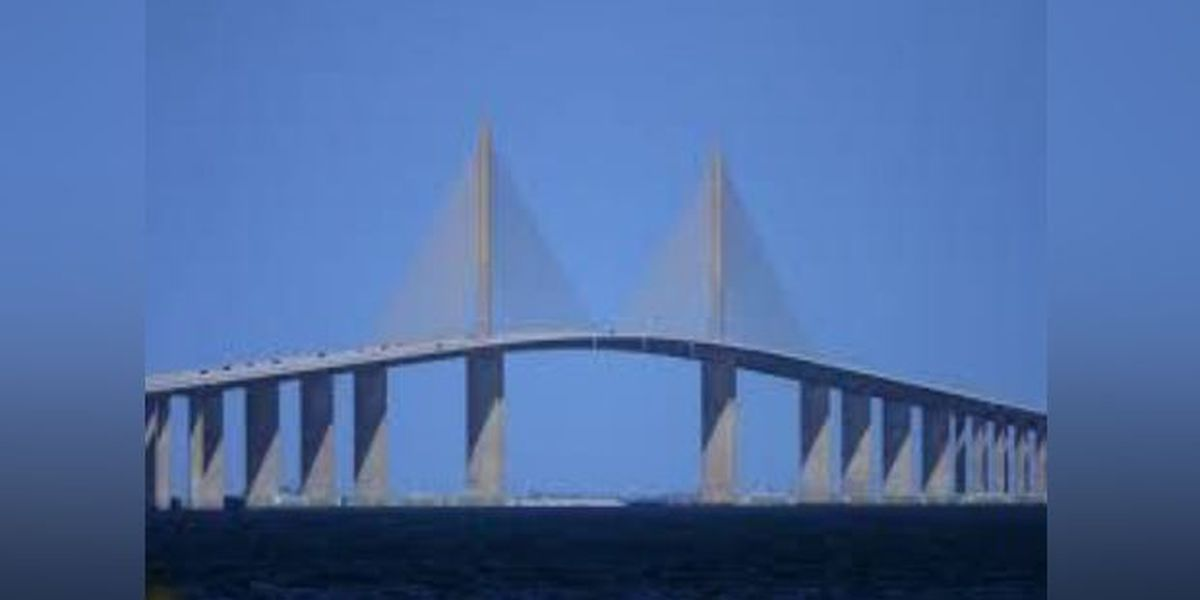 Company that designed the bridge that collapsed in Miami also designed Skyway, part of Selmon