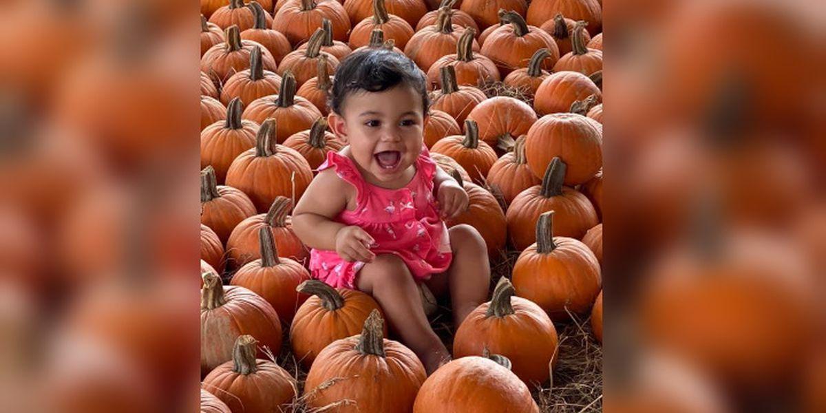 Hunsader Farms Kicks Off Its 29th Annual Pumpkin Festival
