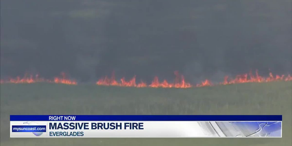 Massive Brush Fire in the Everglades