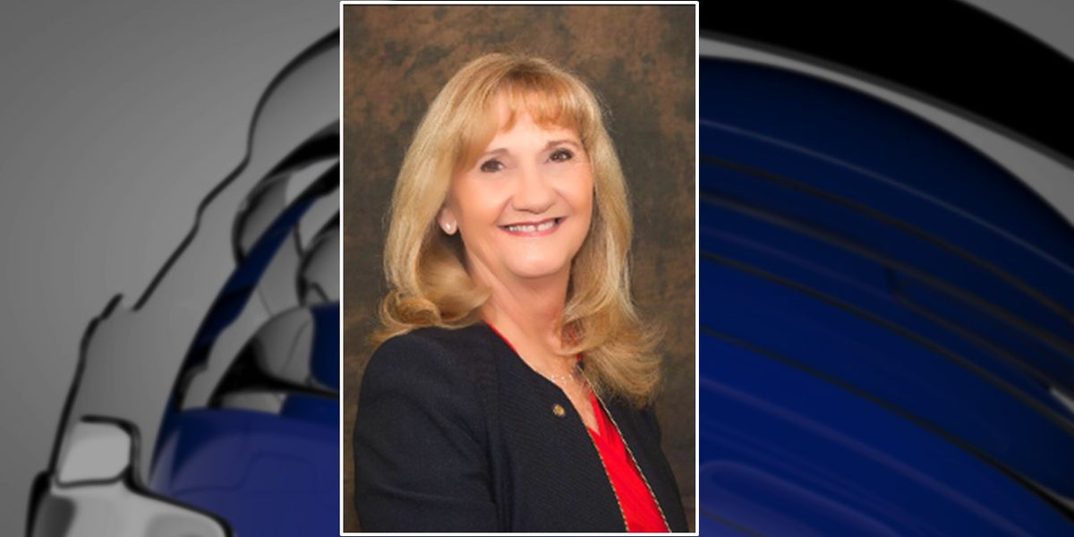 Motion to ask Baugh to resign as chair fails during Manatee County Commission meeting