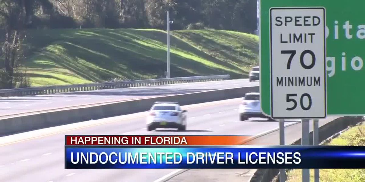 FL: New bill proposes undocumented immigrants to receive driver license