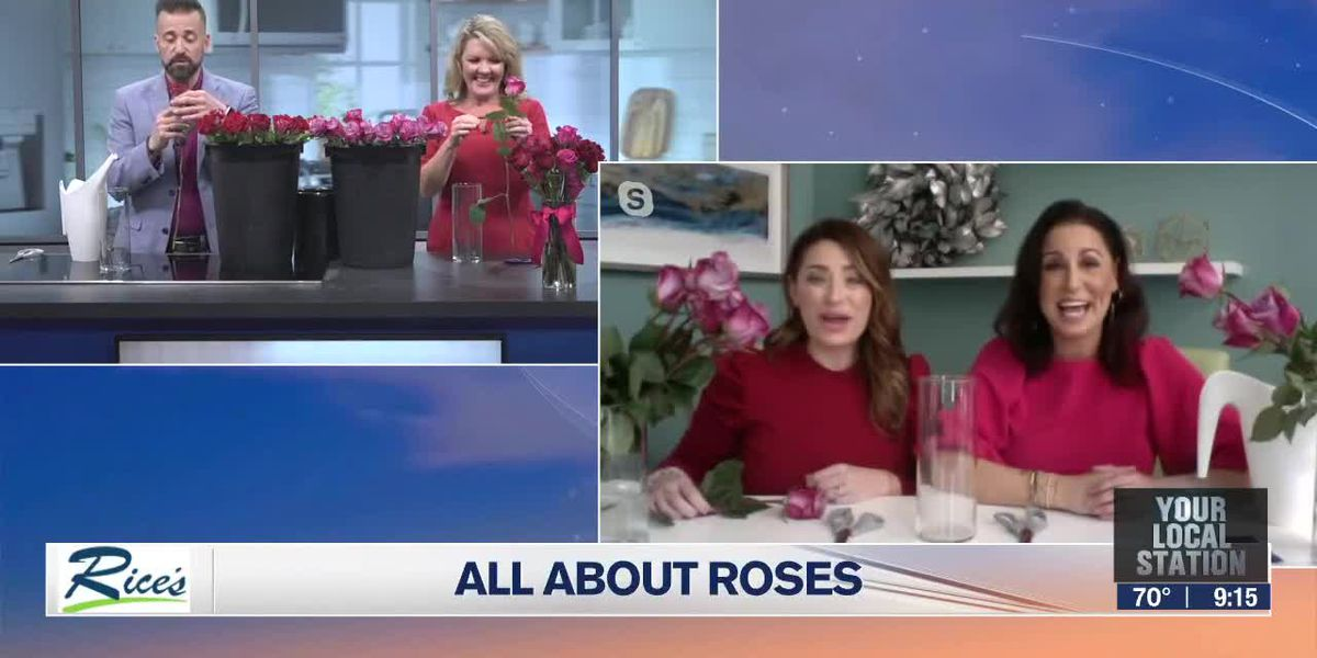 Choosing the right roses with Two Blooms l Suncoast View