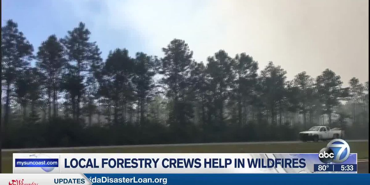 Myakka River District Forestry Services provides assistance to panhandle wildfires