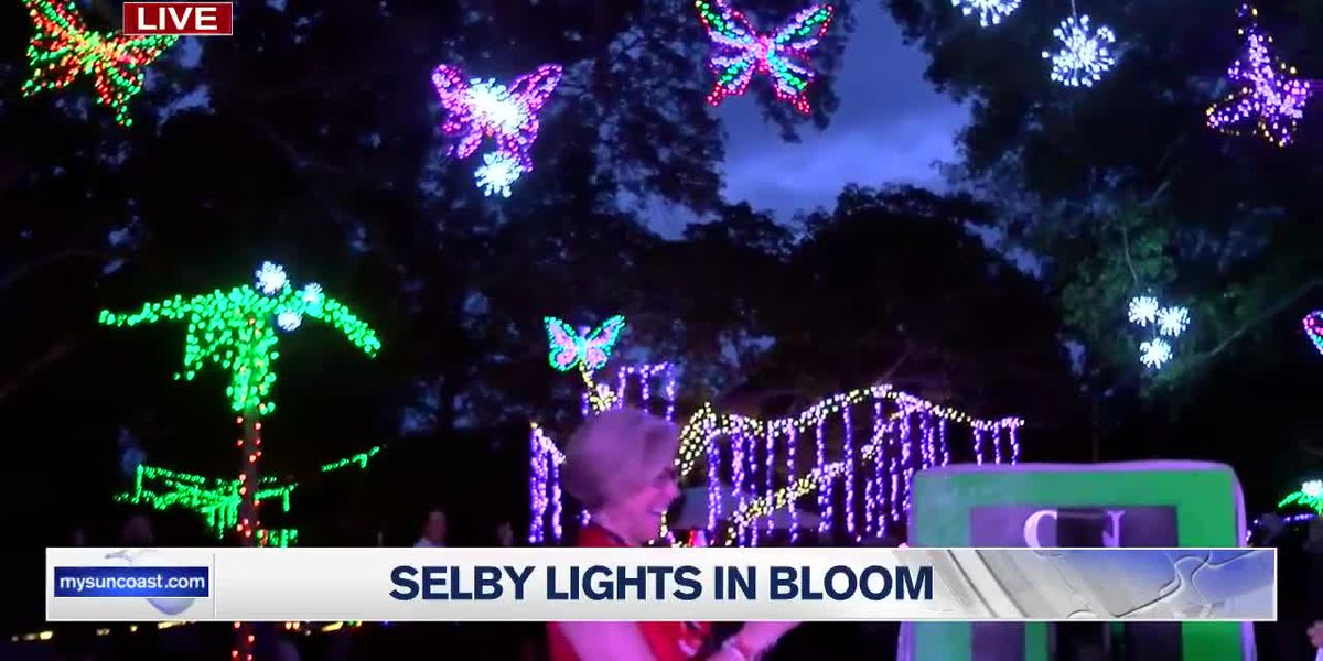 Selby 'Lights in Bloom' Lighting