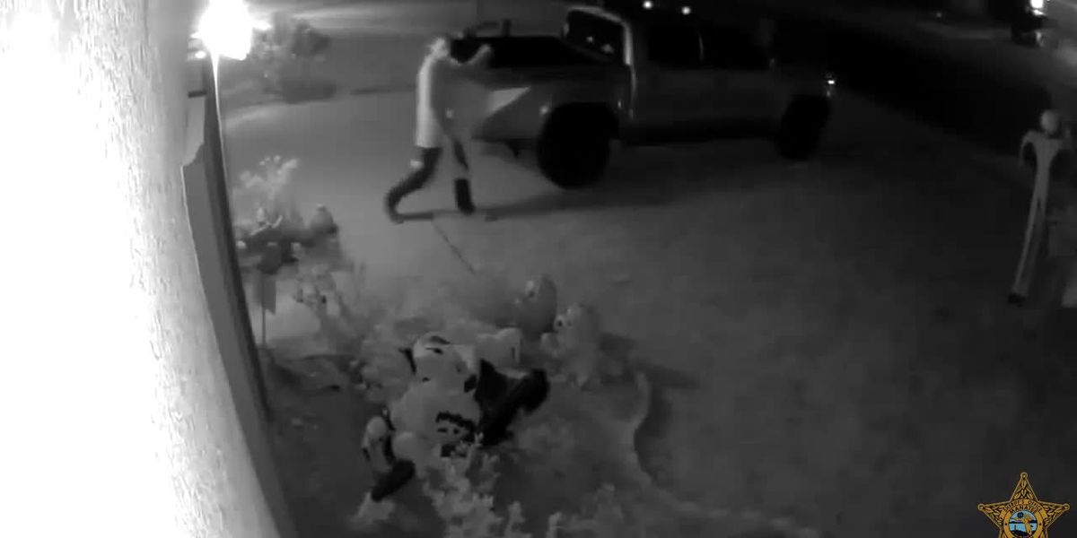 Video shows man making off with Halloween decoration in Manatee County