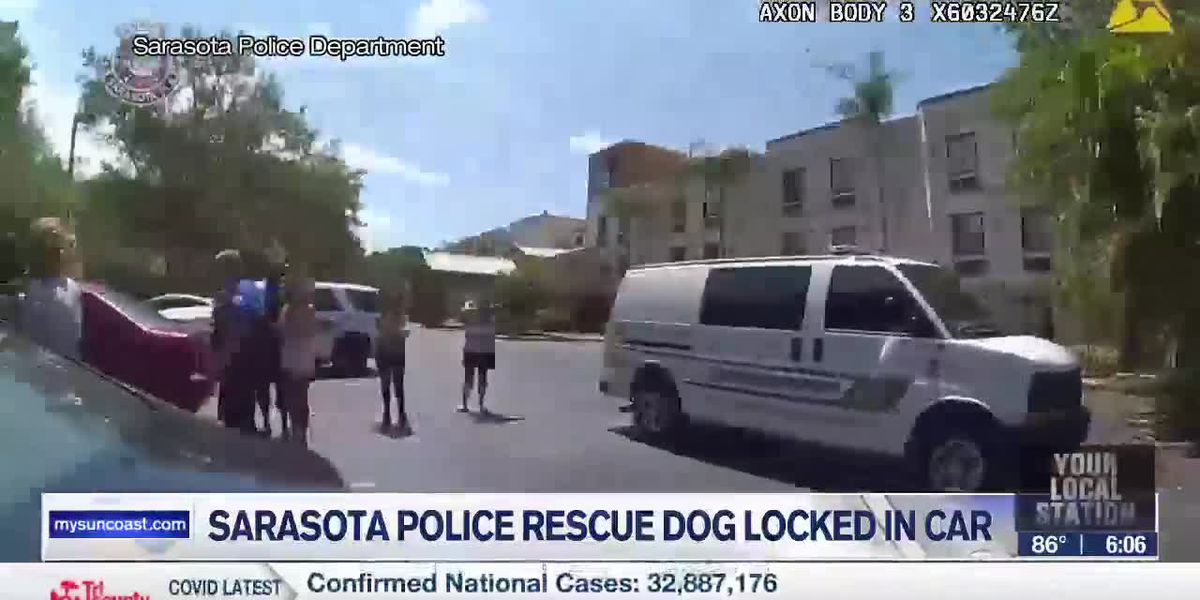 Sarasota Police rescue dog locked in car