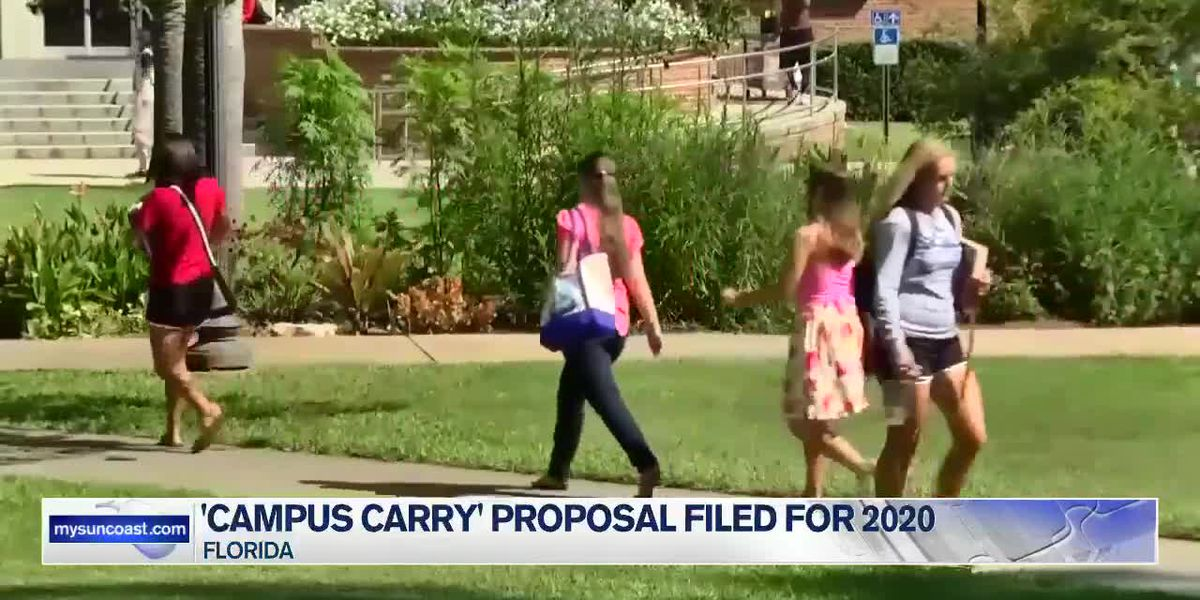'Campus Carry' proposal filed for 2020