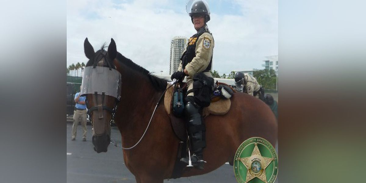 Manatee County deputies say goodbye to patrol horse after 10 years of service