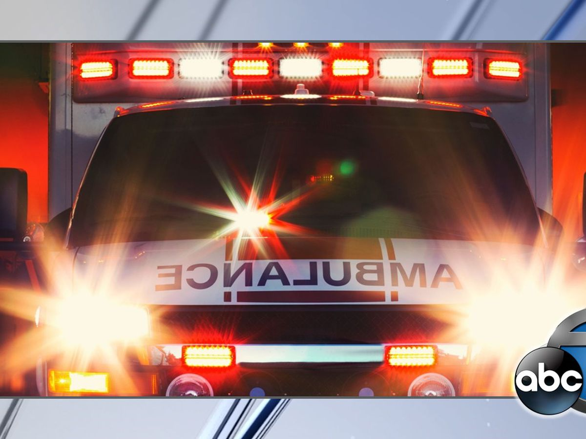 2 dead after Manatee County motorcycle crash