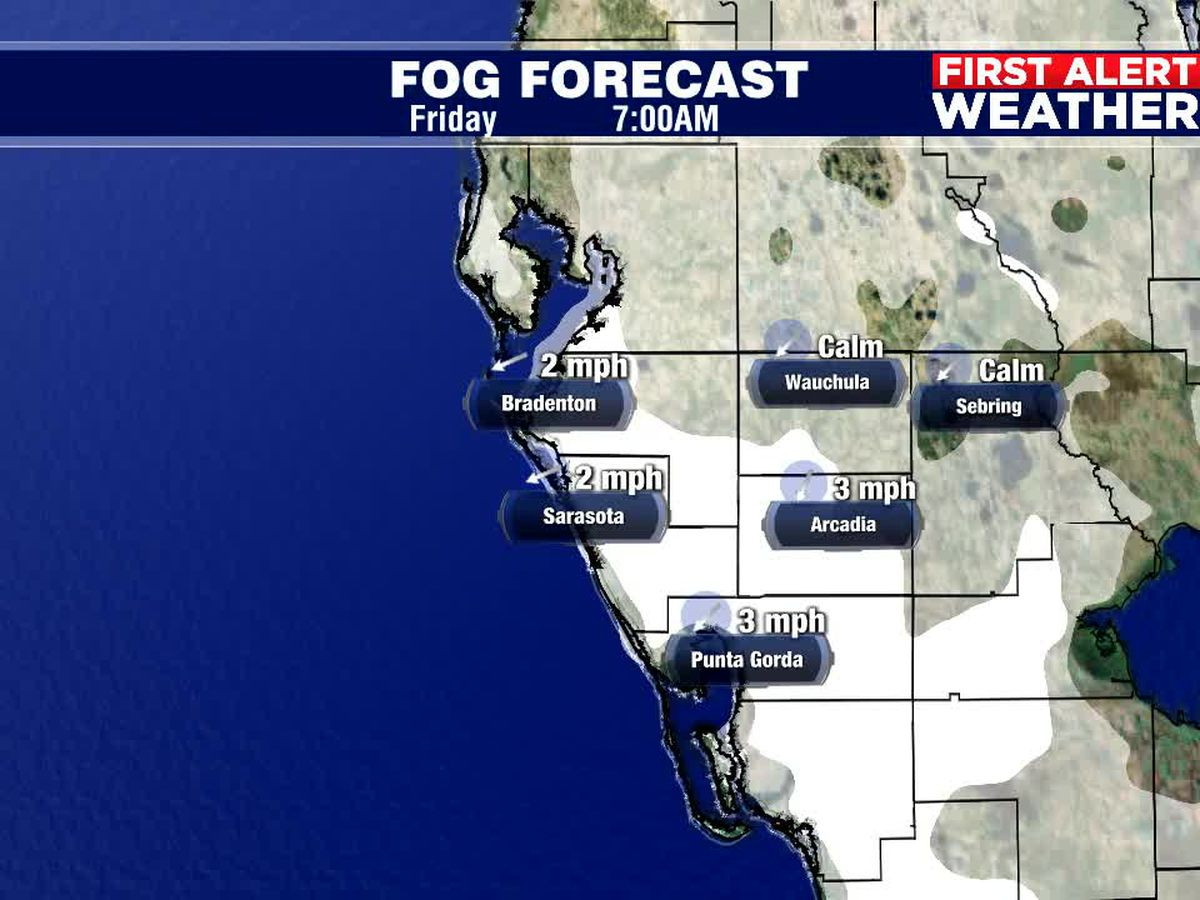 Warm Thanksgiving Weekend, with a little morning fog!