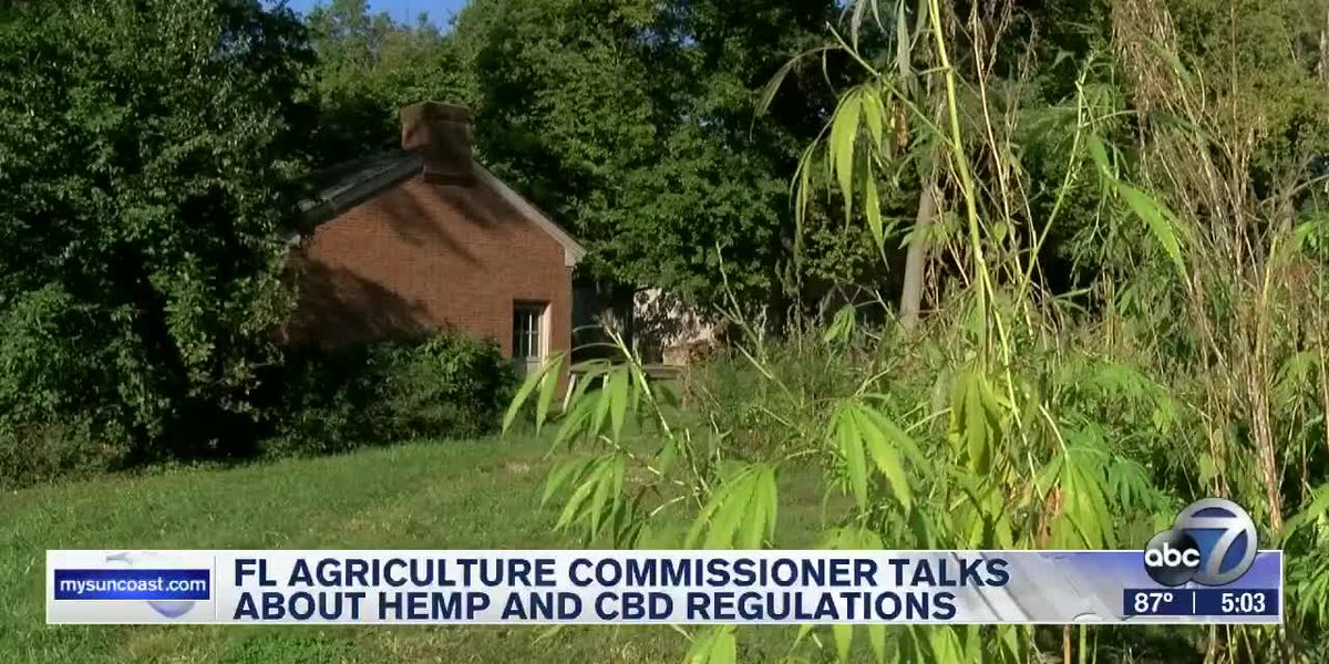 FL Agriculture Commissioner working on new hemp law and regulating CBD