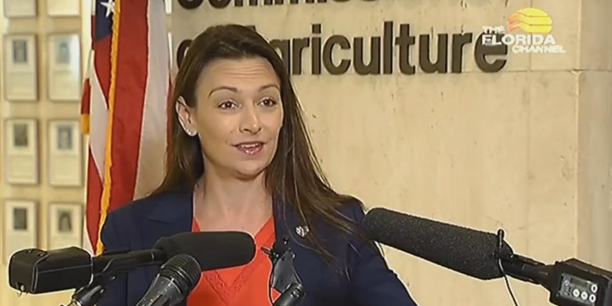 Ag commissioner rips DeSantis over election bill