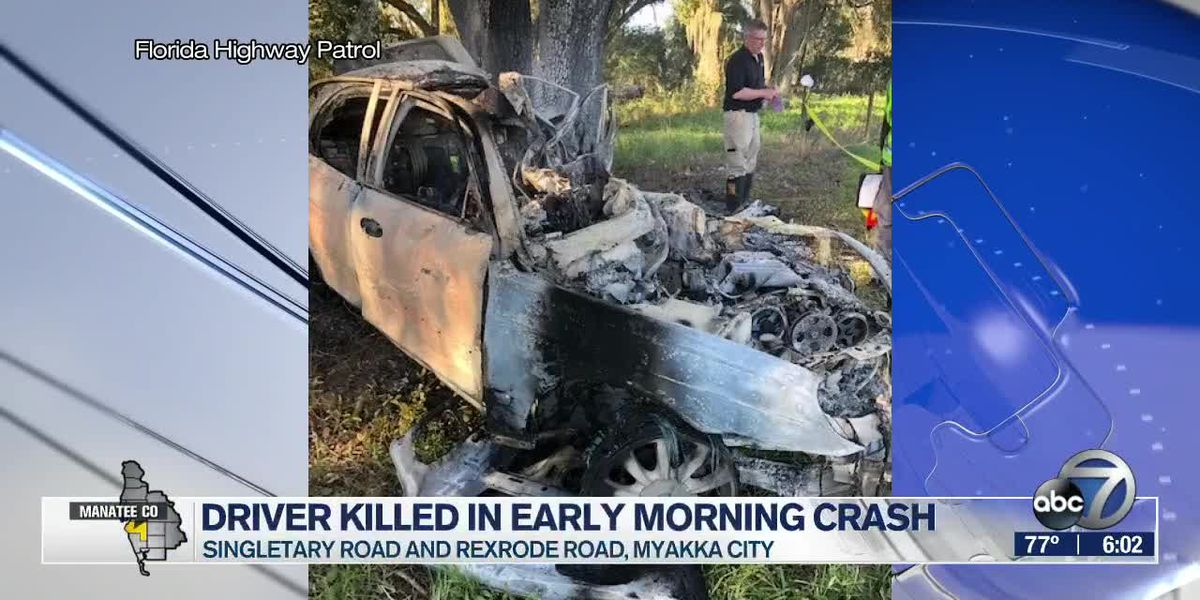 Driver Killed in Early Morning Crash