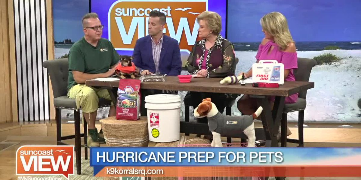 How to Prepare You and Your Pets for Hurricane Season with K9 Korral   Suncoast View