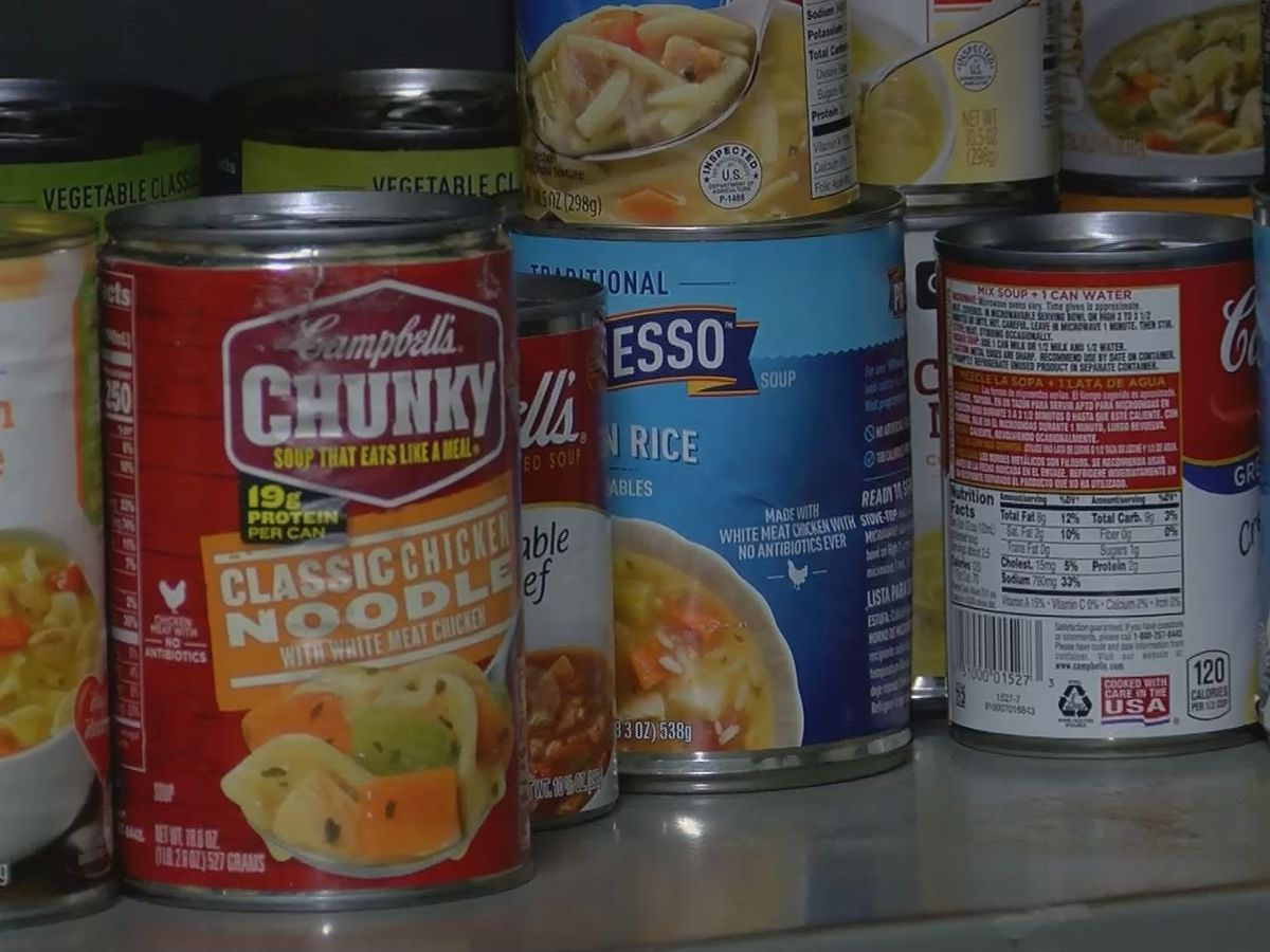 USF-Sarasota-Manatee campus unveils food pantry and fund program for students amid coronavirus pandemic