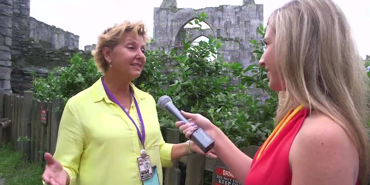 """We Dive into """"Hagrid's Motorbike Adventure"""" with Executive Producer Elaine Hinds   Suncoast View"""