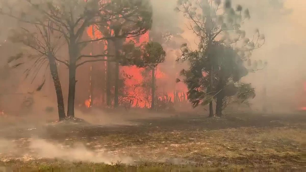 VIDEO: 80-acre brush fire forces evacuations in Charlotte County