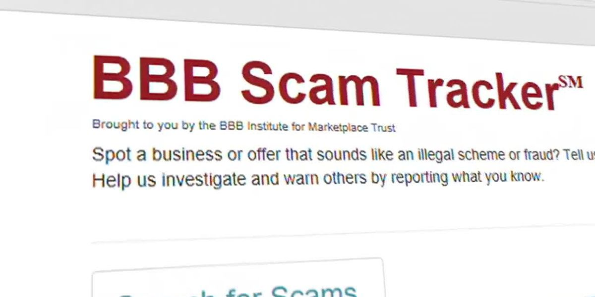 BBB: Adults 18-24 are at the highest risk of scams